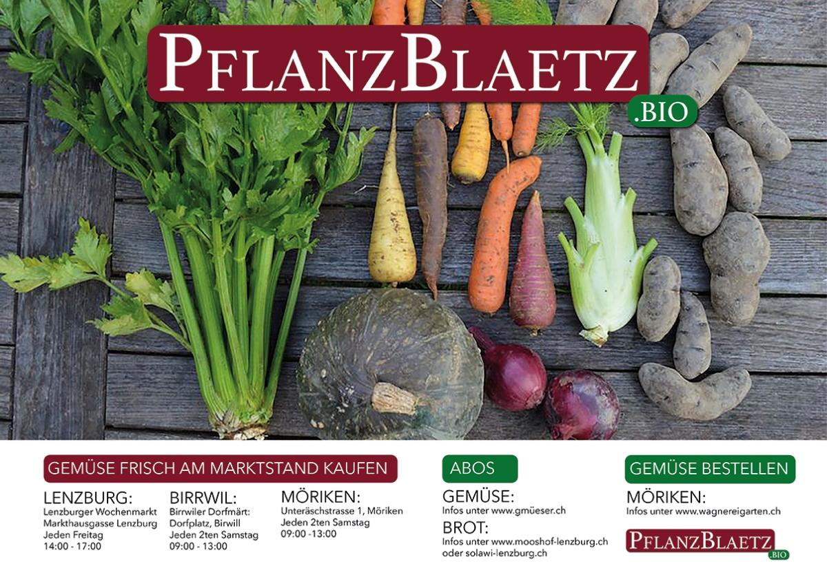 flyer_pflanzblaetz_druckweb